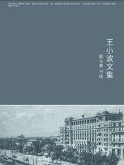 王小波全集.第九卷–epub/mobi/txt电子书下载